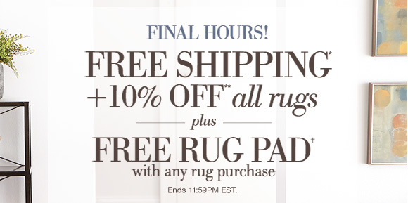 Home Decorators Collection Final Day Free Shipping 10 Off All Rugs Milled
