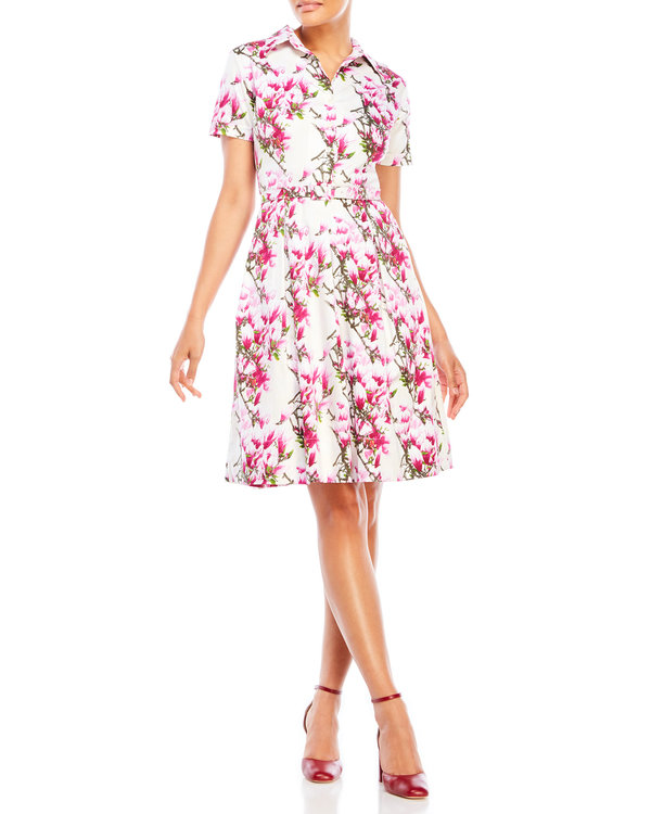 Printed Belted Fit & Flare Dress