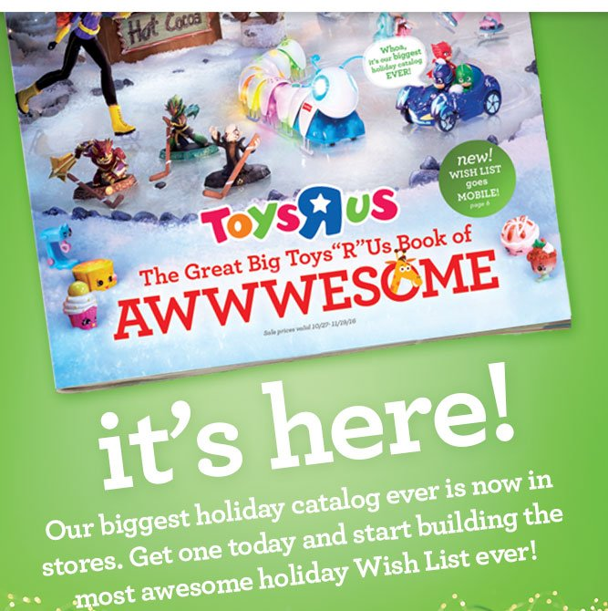 the great big toysrus book of awwwesome