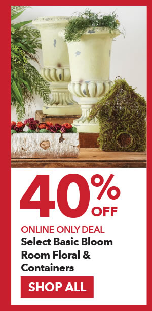 Online Only 40% off Select Basic Bloom Room Floral & Containers. SHOP ALL.