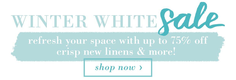 Winter White Sale Banner B