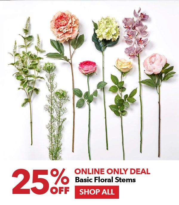 Online Only Deal 25% off Basic Floral Stems. Shop All.