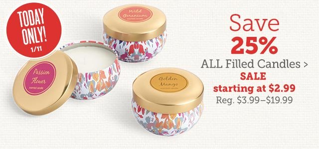 Save 25% All Filled Candles ›