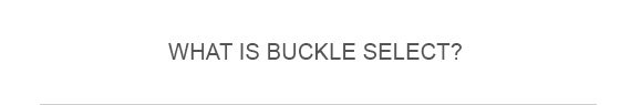 What Is Buckle Select?