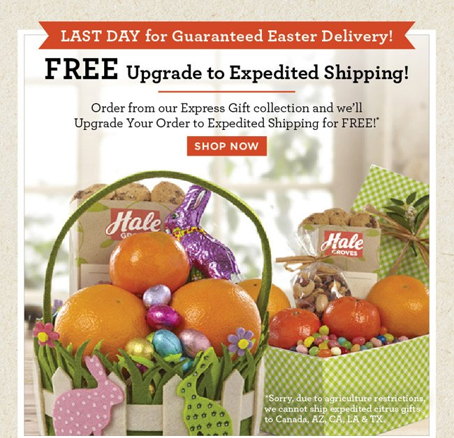 Hale groves last day free upgrade for guaranteed easter delivery standard ground shipping and handling fees apply upgraded expedited shipping available for select gifts within the continental united states negle Gallery