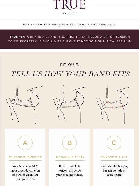 96454588ed True Co  How Should Your Bra Fit