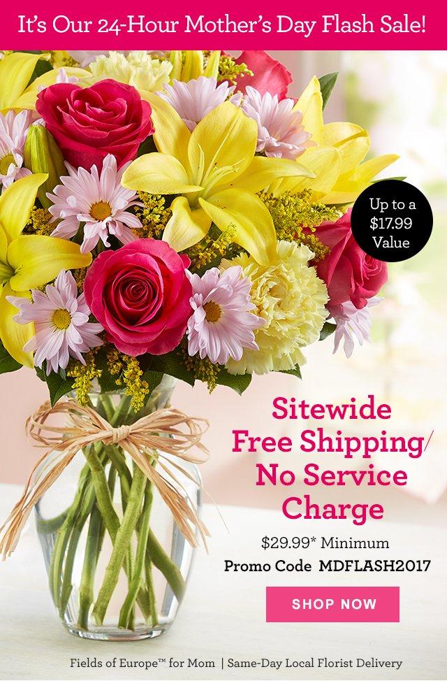 1 800 Flowers E X T E N D E D Free Shipping Mother S Day