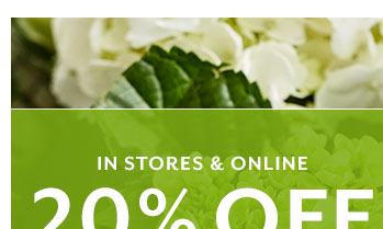 20% OFF One Item For Mom ...
