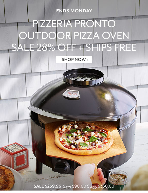 Pizzeria Pronto Outdoor Pizza Oven - SALE $239.96