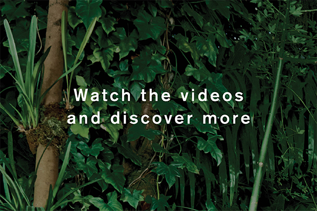 Watch the videos and discover more