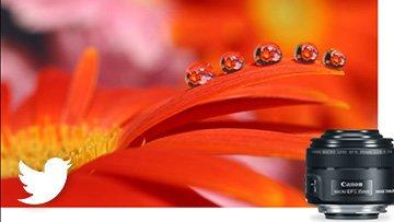 Here's 9 Unique Macro Lenses especially for #MacroPhotoWeek!