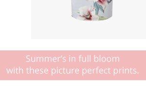 Bloom summer