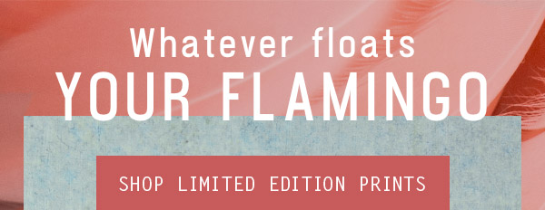 Whatever floats your flamingo - Shop limited edition prints