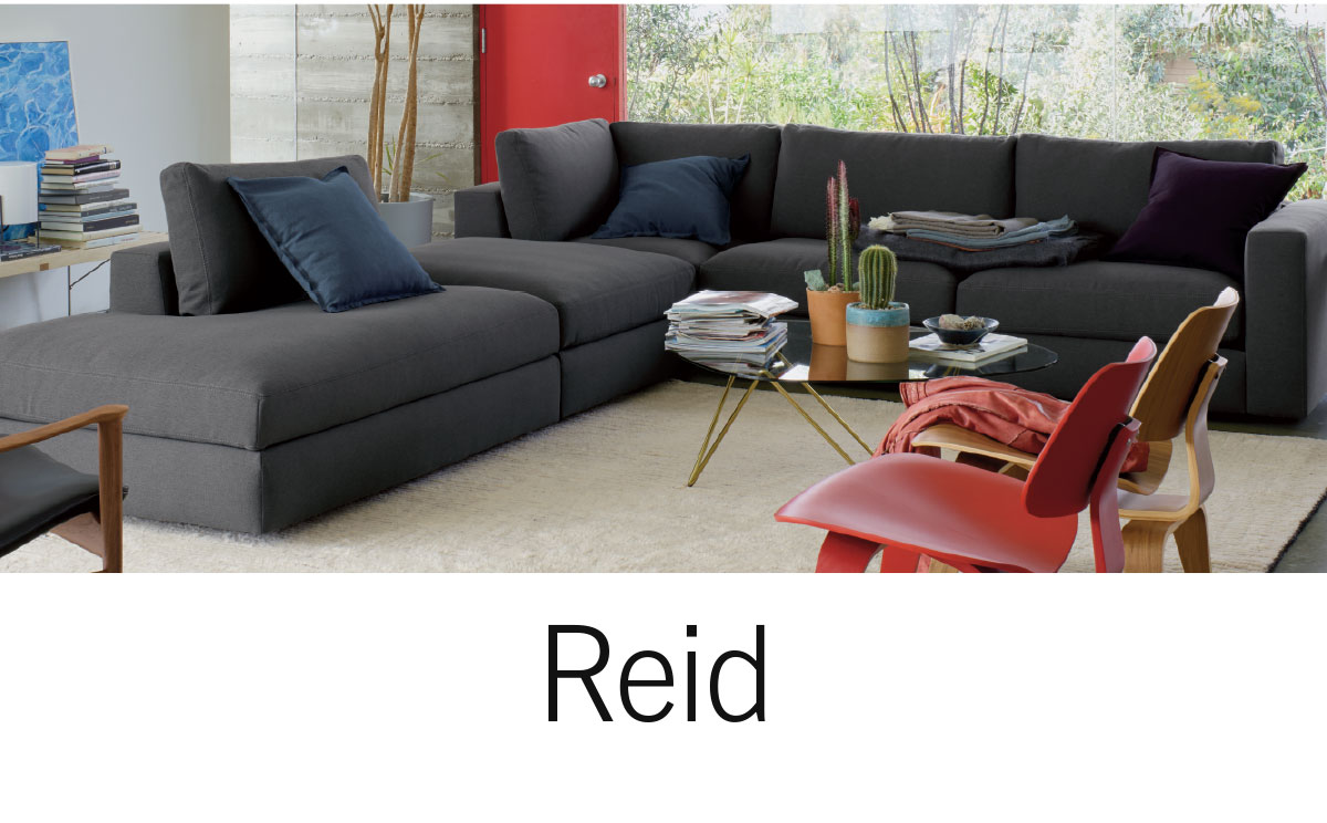 Shop Reid
