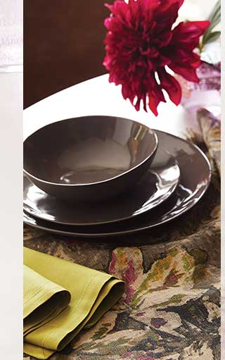 Shop Dinnerware ›