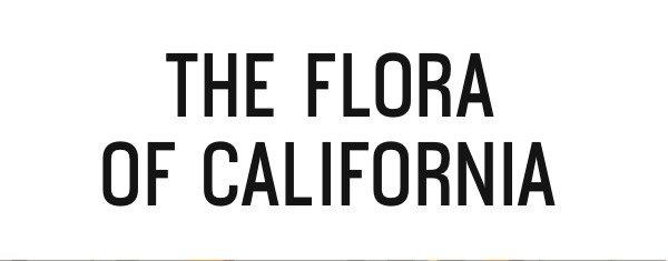 The Flora of California
