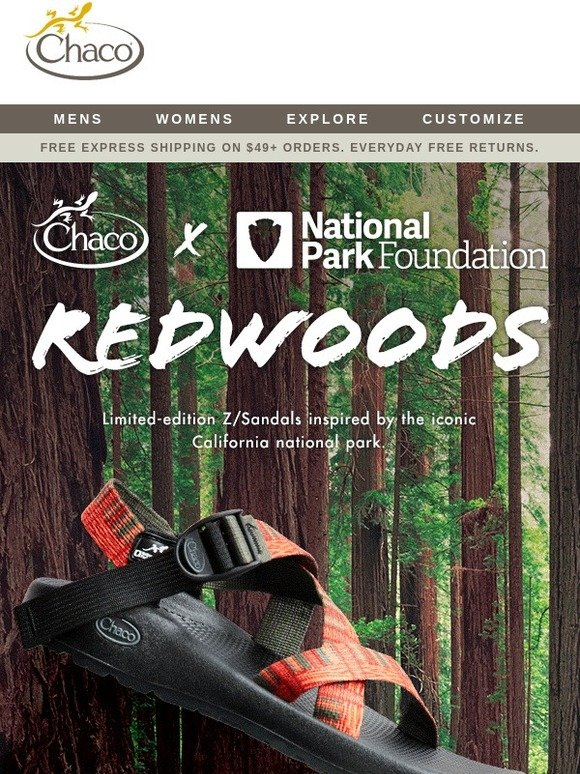 acd5c795911a Chaco  Exclusive  Redwoods Inspired Z Sandals