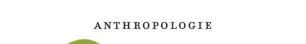Shop anthropologie.com.