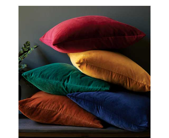 Shop Throw Pillows ›