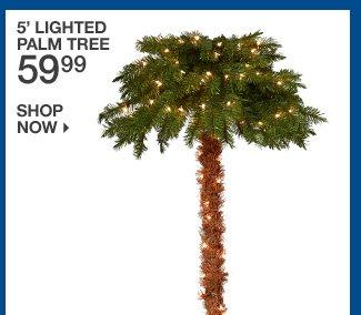 Shop 59.99 5' Lighted Palm Tree