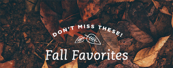 FALL FAVORITES YOU'LL LOVE