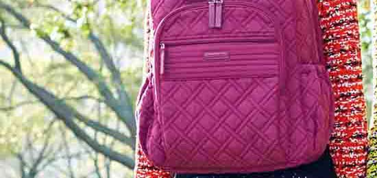 Campus Tech Backpack in Hawthorn Rose