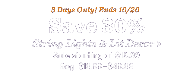 Save 30% String Lights & Lit Decor ›