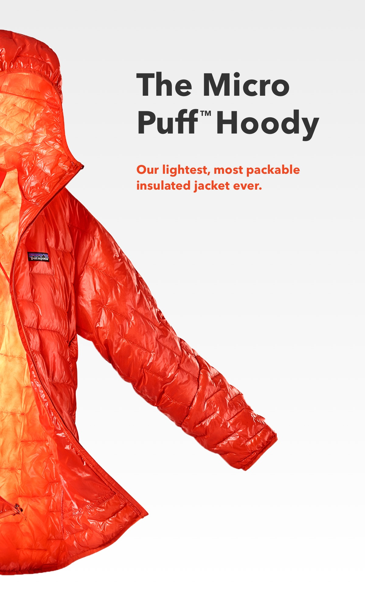 The Micro Puff™ Hoody