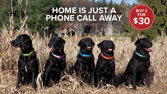 HOME IS JUST A PHONE CALL AWAY