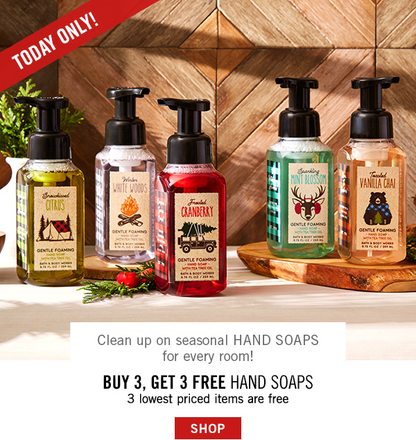 Today Only! Clean up seasonal Hand Soaps for every room! Buy 3, Get 3 Free Hand Soaps - the 3 lowest priced items are free - SHOP