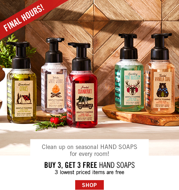 Final Hours! Clean up seasonal Hand Soaps for every room! Buy 3, Get 3 Free Hand Soaps - the 3 lowest priced items are free - SHOP
