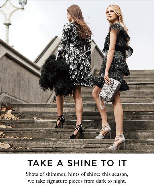 TAKE A SHINE TO IT