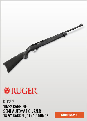 Ruger 10/22 Carbine, Semi-Automatic, .22LR, 18.5 Inch Barrel, 10+1 Rounds