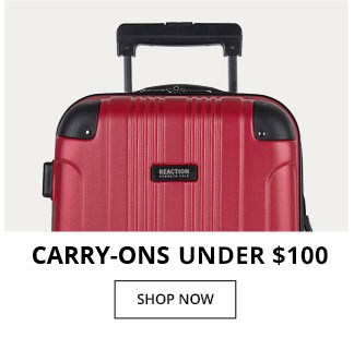 Carry On's Under $100
