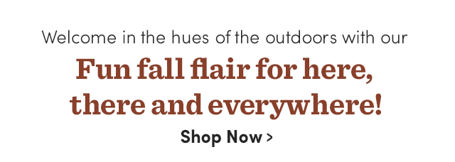 Fun Fall Flair For Here, There & Everywhere! Shop Now ›