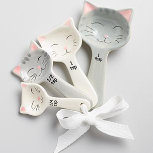 Cat Ceramic Measuring Spoons ›
