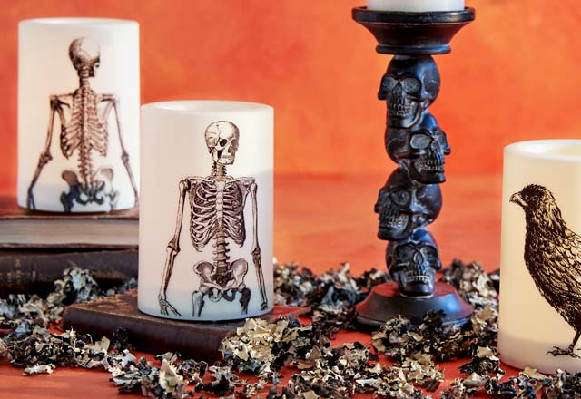 Save 50% All Halloween Candles. Shop Now ›