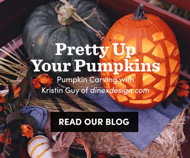 Pretty Up Your Pumpkins. Read Our Blog ›
