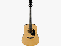 PDR10NT PF Performance Series Dreadnought Acoustic Guitar