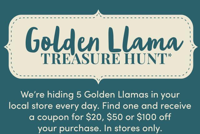 Golden Llama Treasure Hunt* How To Play ›