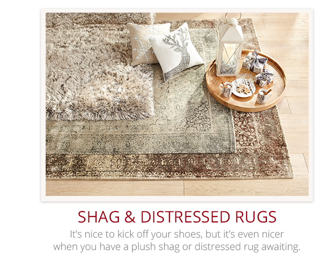 Shag and Distressed rugs.