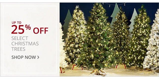 ChristmasTrees-bnr-1711