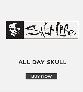 Salt Life All Day Skull Decal