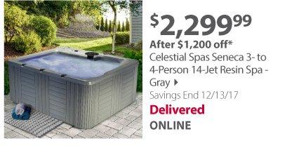 Celestial Spas Seneca 3- to 4-Person 14-Jet Resin Spa - Gray
