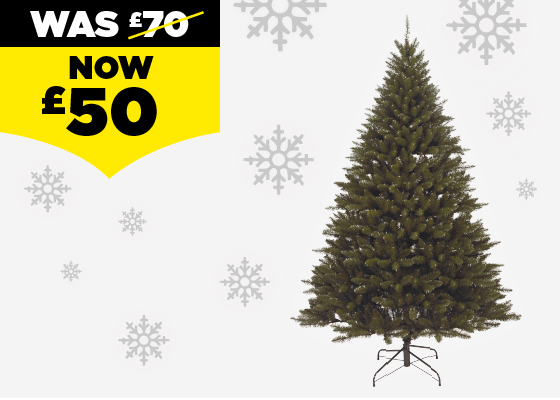 Homebase: 🎄 Get Festive With Our Tree-mendous Range