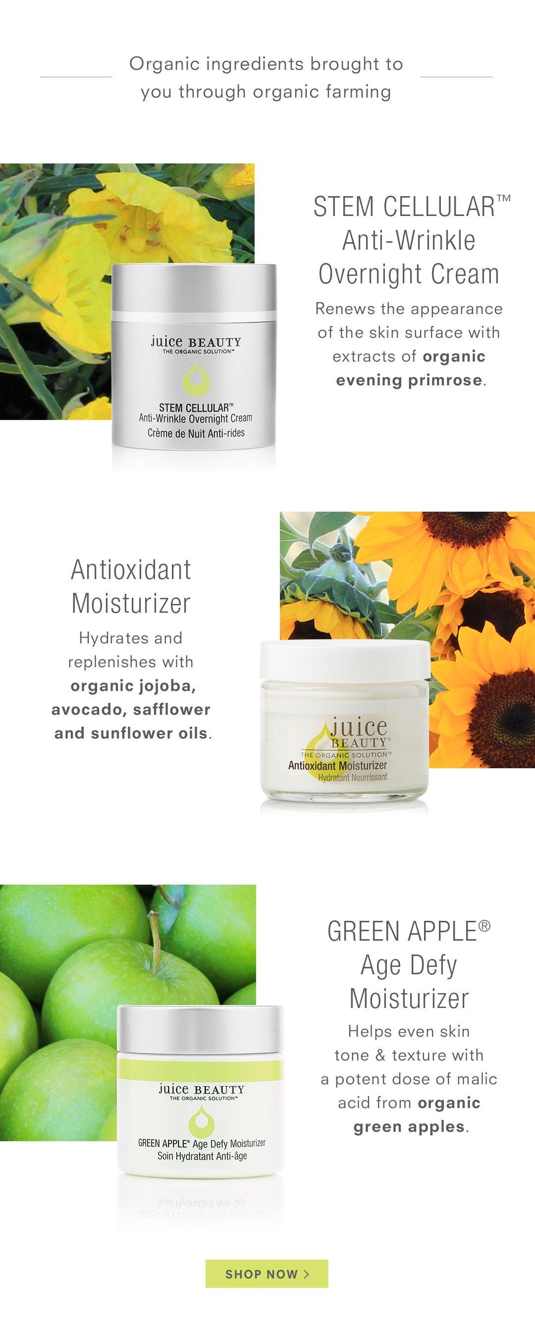Organic ingredients brought to you through organic farming