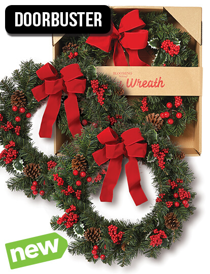 24 inch Boxed Holiday Wreath.