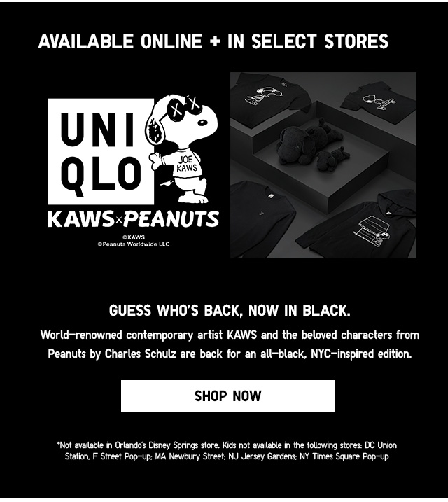 KAWS x PEANUTS - Shop Now
