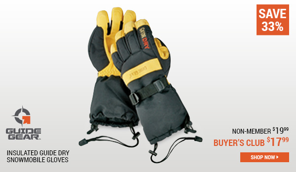 Guide Gear Insulated Guide Dry Snowmobile Gloves