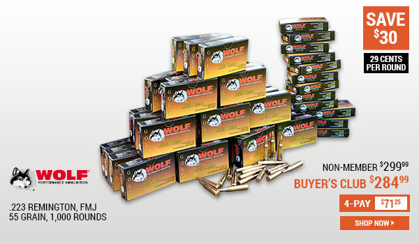 Wolf Gold, .223 Remington, 55 Grain, FMJ, 1,000 Rounds